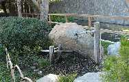 Japanese bamboo scare fountain