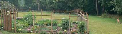 fenced veg garden with deer nearby